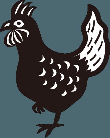ニュース / ブログ 鶏
