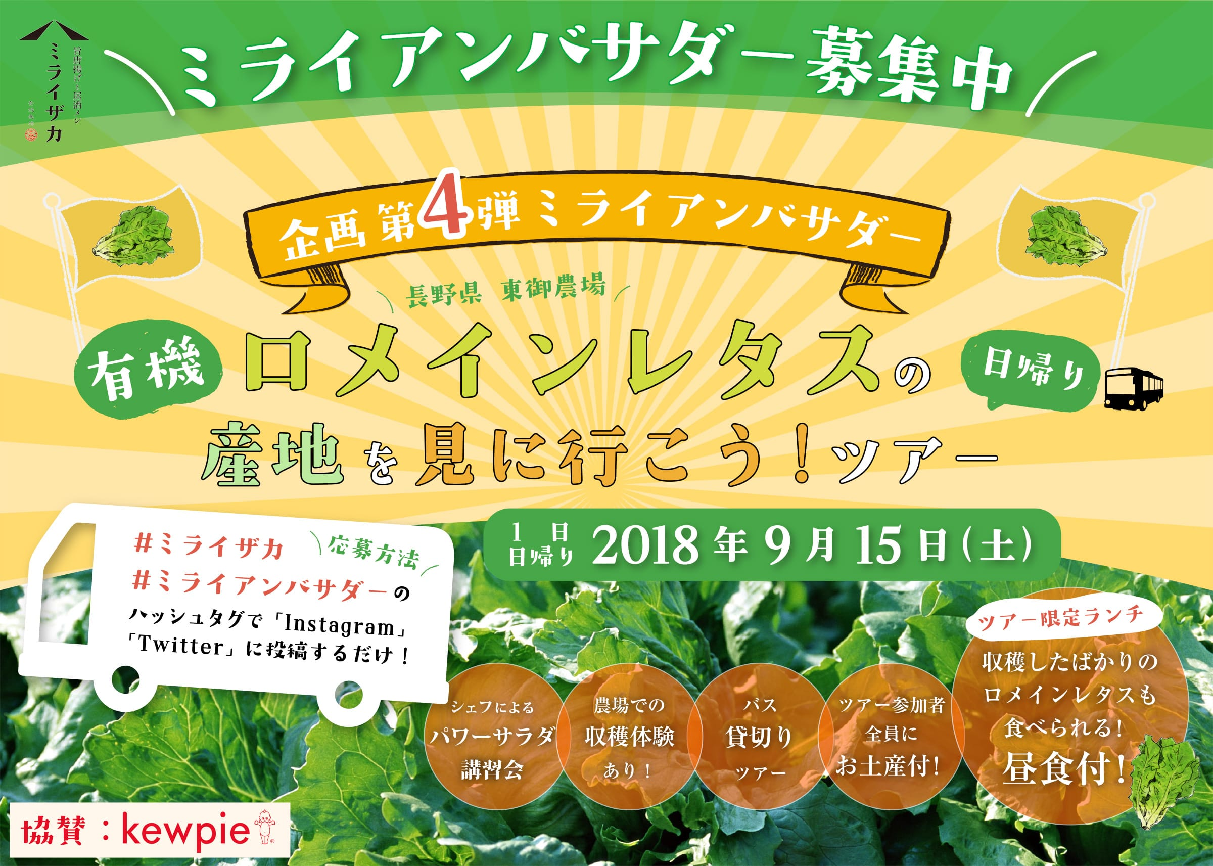 9/15「有機ロメインレタスの産地を見に行こう!ツアー」参加者募集中!