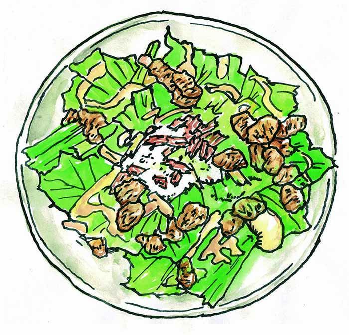栄養が豊富、有機ロメインレタスについてご紹介します