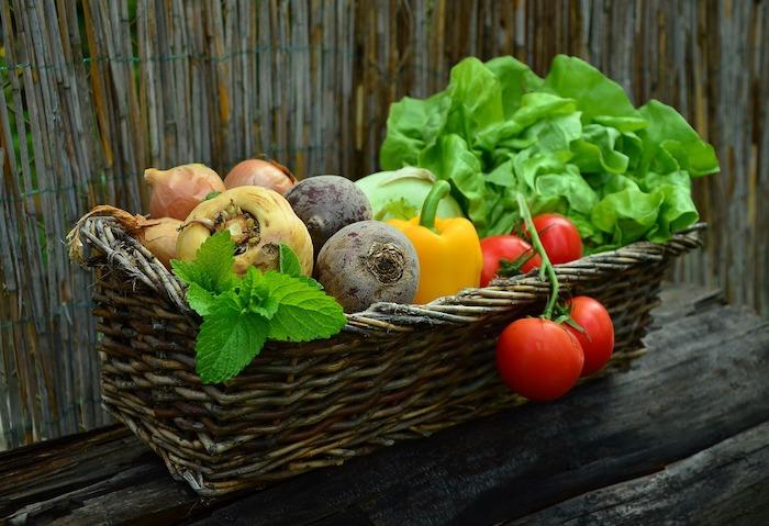 【教えて!】生野菜と味噌はどうして相性がいいの?
